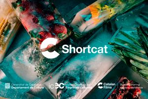 1611733286-banner-shortcat-home